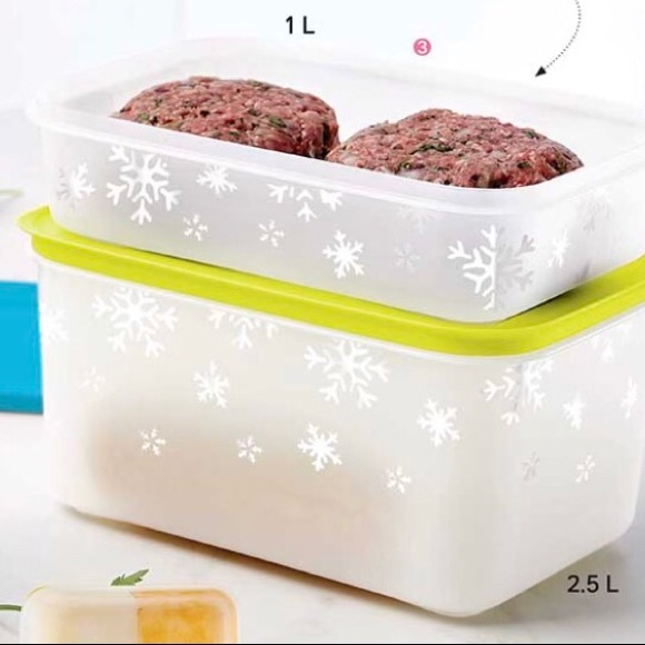 Tupperware Set of 2 Freeze It Starter Container